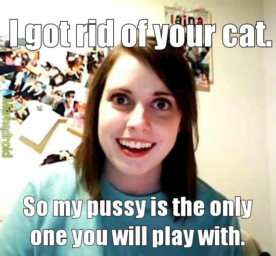 wrong kitty - meme