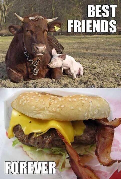 Amigos x siempre - meme