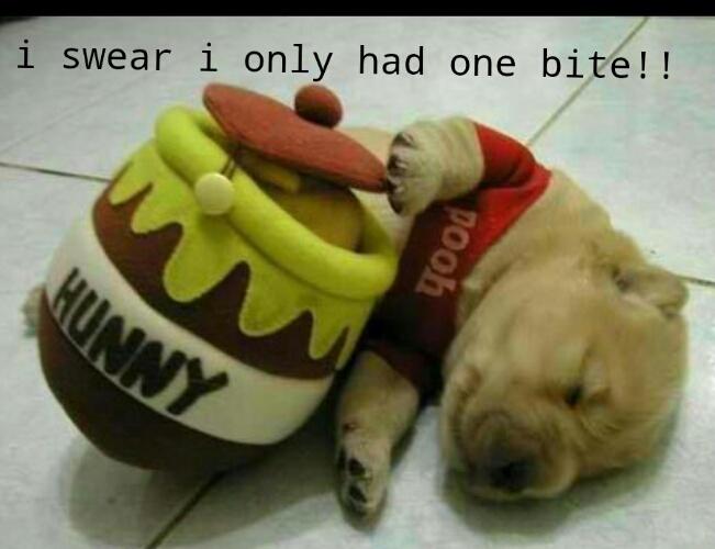 i love puppies! - meme