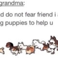 Hopefully the puppies dont have rabies