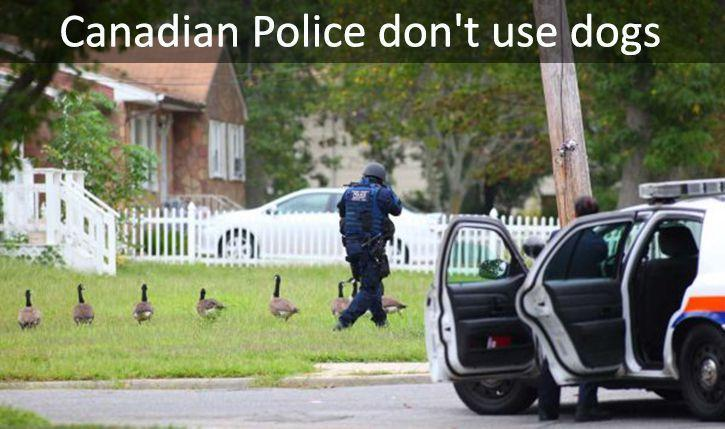 Theres criminals in canada? - meme