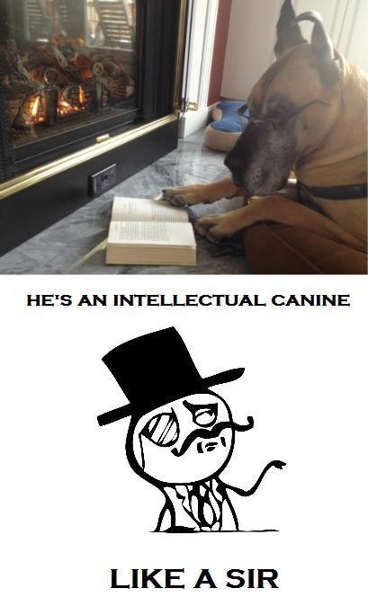 like a sir - meme