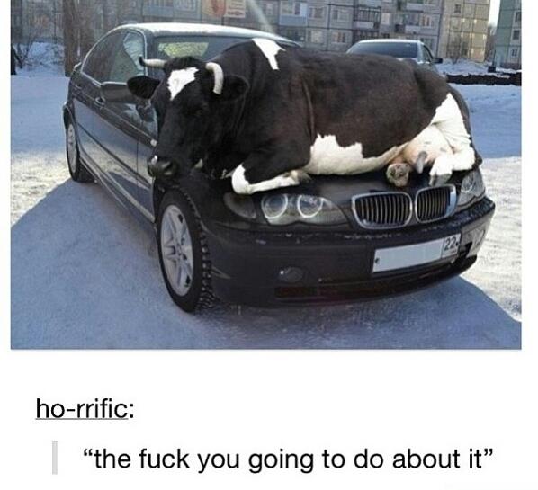 Not my BMW! - meme