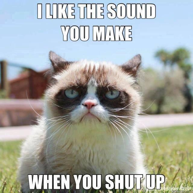 grumpy cat makes the internet worth it. - meme