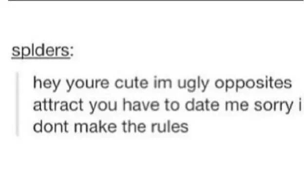 Rules for dating me meme