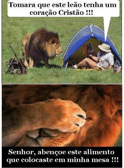 Leão cristão - meme