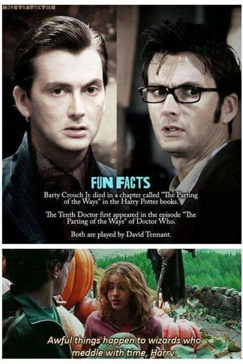 I got herpes after screwing Dumbledore. - meme