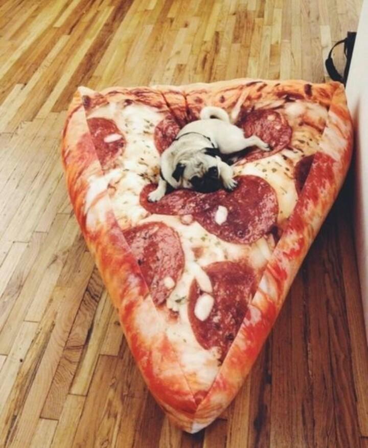 Everyone loves pizza! - meme