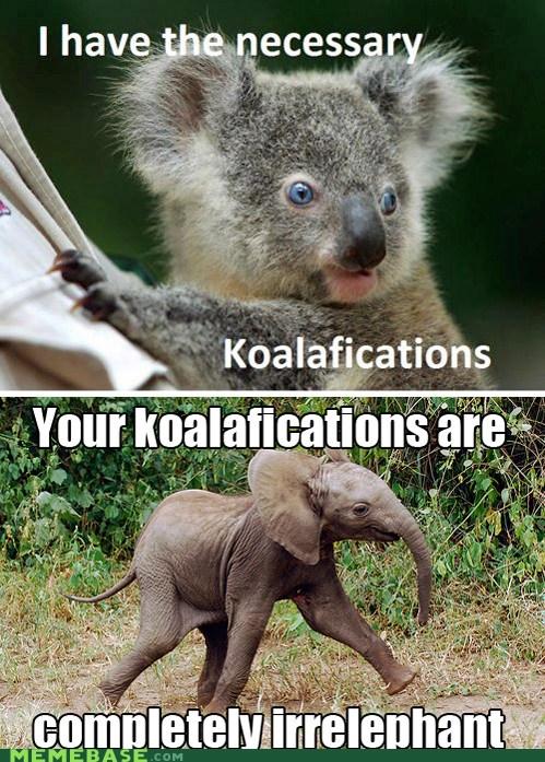 Animal Talk... - meme