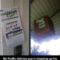 Fedex delivery guy lvl Well done