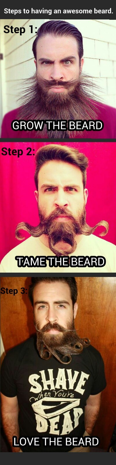 TAME YOUR BEARD BRO!   IMAGES ARE BORROWED, BUT MEME IS ORIGINAL