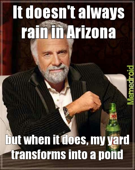 my fellow arizonians, you know what I'm talking about - meme