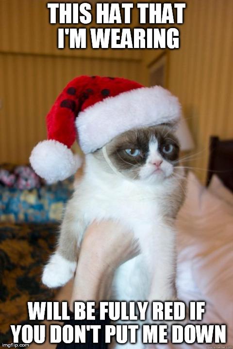 Grumpy cat, U scary - meme