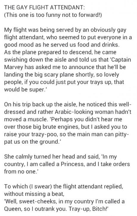 awesome flight attendant - meme