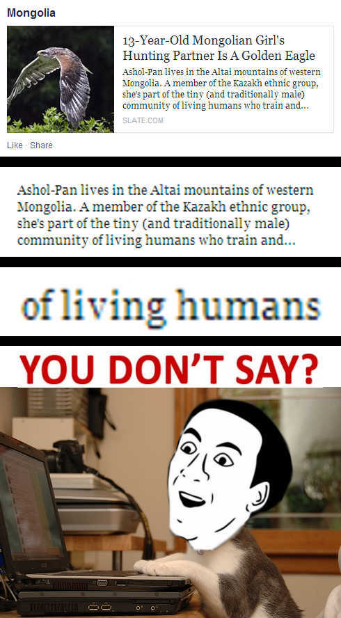 What kind of Community do I live in? - meme