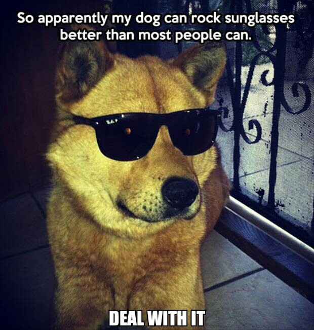 Deal with it - meme