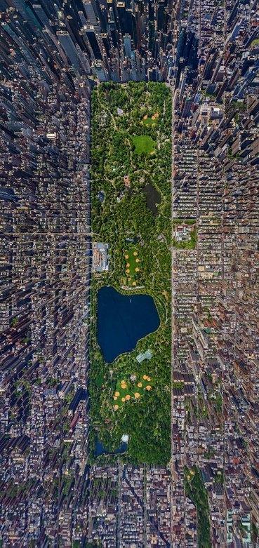 Central Park desde otro ángulo.................................................. .................................................. ................................n...n........ . ......  . . ....... . .verga de ornitorrinco - meme