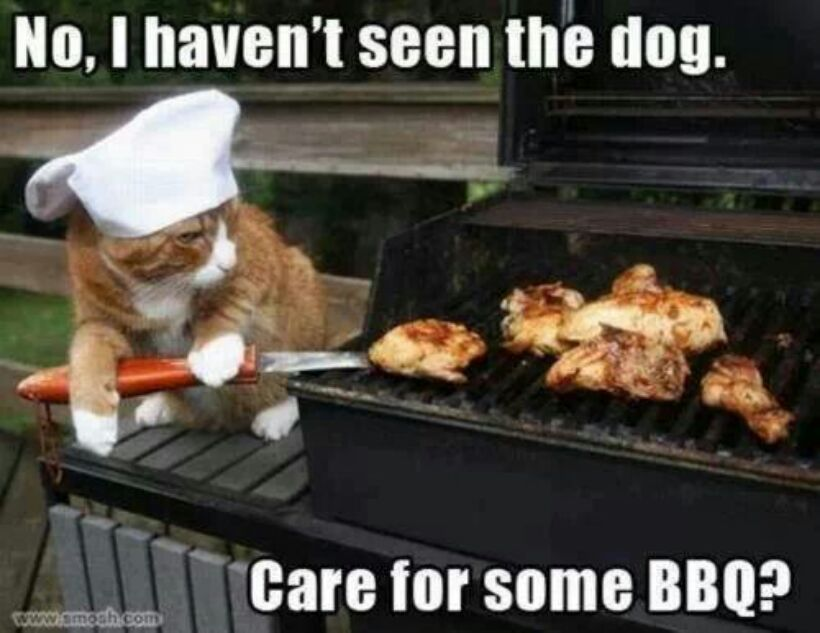 Care for some BBQ Master? - meme