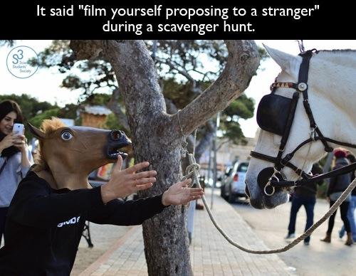 Favourite horse mask vine/pic? - meme