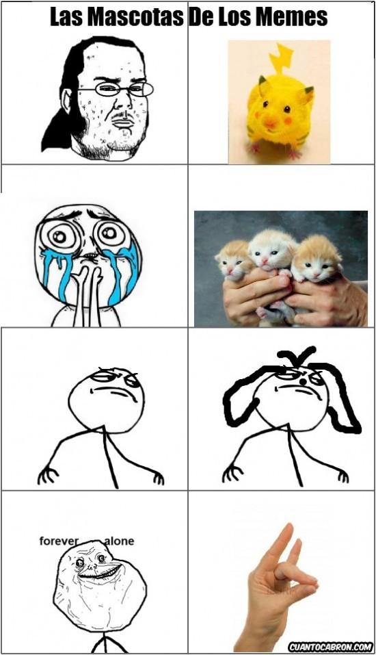 Meme-Mascotas