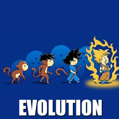 La evolución - meme