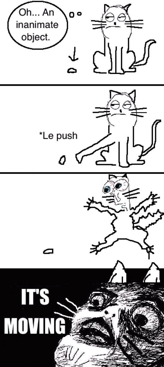 Cats are adorable.  Agreed? - meme