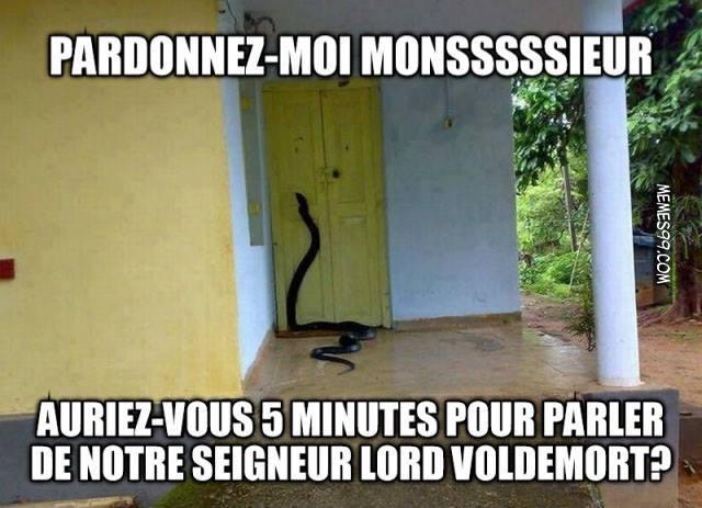 Notre seigneur Voldemort ^^ - meme