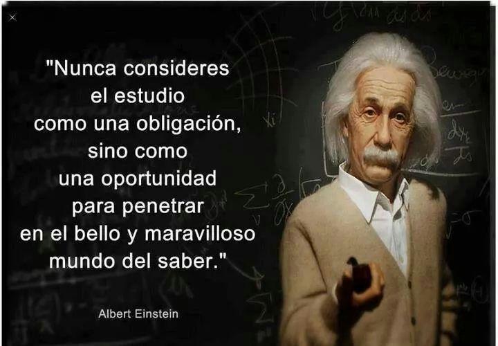 genio Einstein - meme