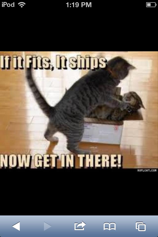 Kitties <3 - meme
