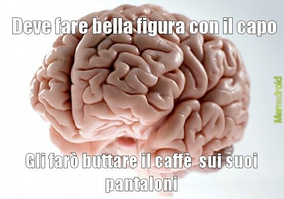 cervelloooooooooo - meme