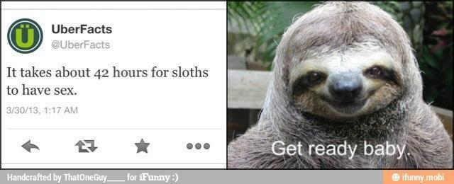I'm a sloth too *rapeface* - meme