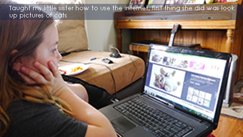 cats own the internet - meme