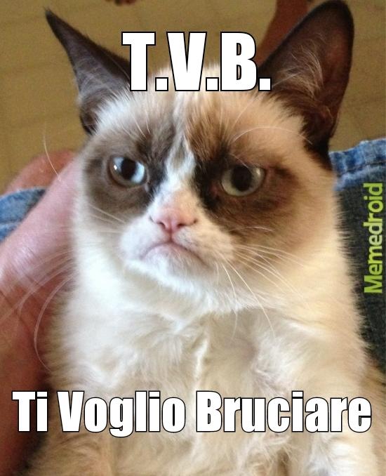 T.V.B. - meme