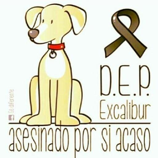 #depexcalibur #respect (soy de España pero cada vez me da más asco el pais) - meme